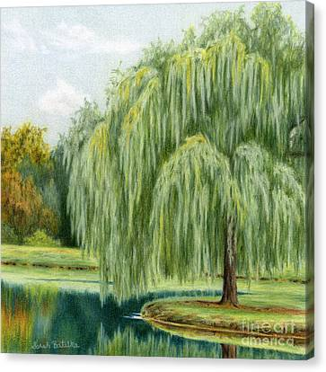 Weeping Willow Canvas Print - Under The Willow Tree by Sarah Batalka
