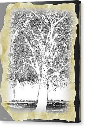 Aesthetic Landscape Image Canvas Print - Weeping Willow Designer by Debra     Vatalaro