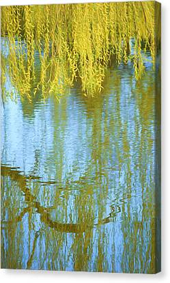 Weeping Willow - Reflections In Water Canvas Print by Nikolyn McDonald