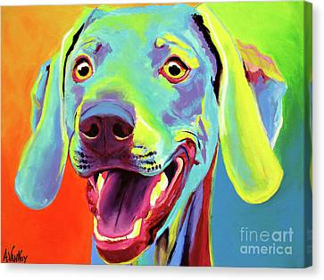 Weimaraner - Taffy Canvas Print by Alicia VanNoy Call