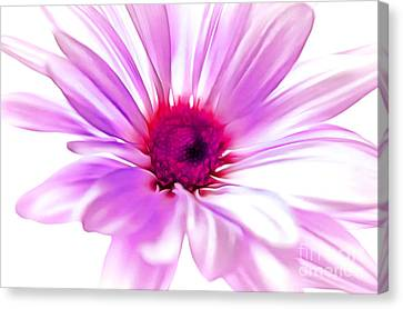 Floral Digital Art Canvas Print - Welcome Spring by Krissy Katsimbras