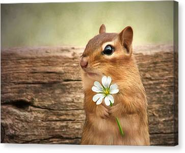 Squirrel Canvas Print - Welcome Spring by Lori Deiter