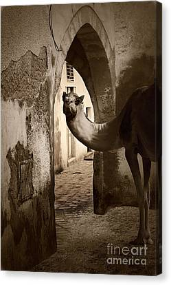 Welcome To The Old City Canvas Print