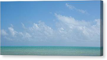 Canvas Print featuring the photograph We'll Wait For Summer by Yvette Van Teeffelen