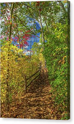 Canvas Print featuring the photograph Wellesley Fall Foliage by Juergen Roth