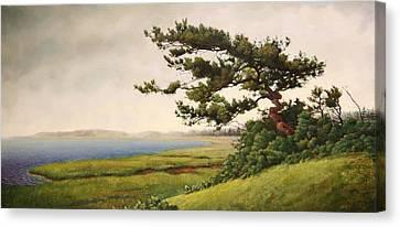 Wellfleet Saltmarsh Canvas Print by Stephen Bluto