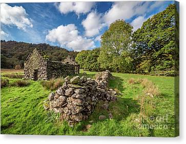 Welsh Cottage Ruin Canvas Print by Adrian Evans