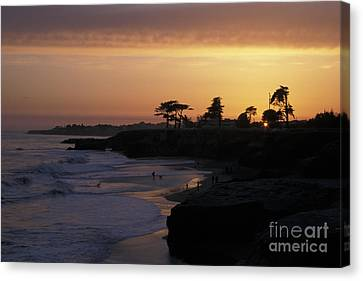 West Cliff At Sunset Canvas Print by Stan and Anne Foster