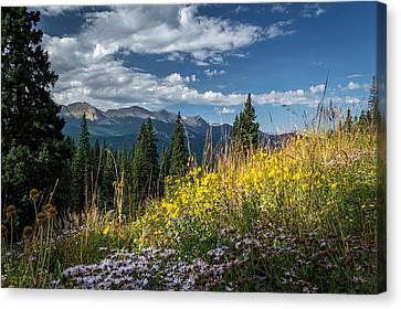 West Elk Mountain Range Canvas Print