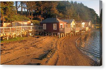 West Marin Nick's Cove Cottages Canvas Print by Dianne Levy