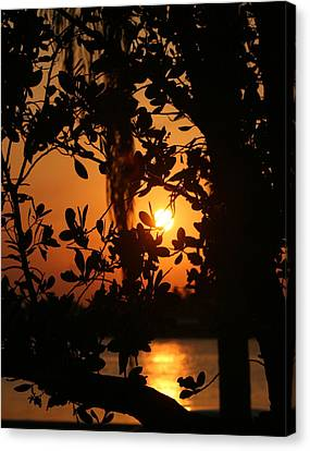 Canvas Print featuring the photograph West Palm Beach Sunrise by Diane Merkle