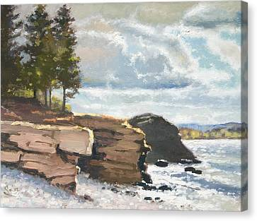 West Shores Presque Isle Canvas Print by Larry Seiler