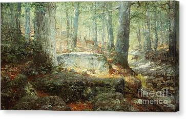 West Virginia Forest, 1905 Canvas Print