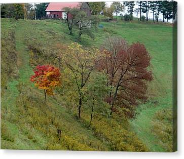 West Virginia Hillside Canvas Print by Terry  Wiley