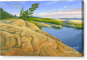 Wind Swept Canvas Print by Michael Swanson