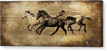 Western Flair Canvas Print by Steve McKinzie