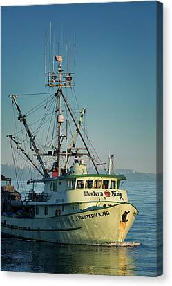 Canvas Print featuring the photograph Western King At Breakwater by Randy Hall