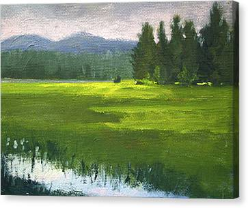Canvas Print featuring the painting Western Meadow by Nancy Merkle