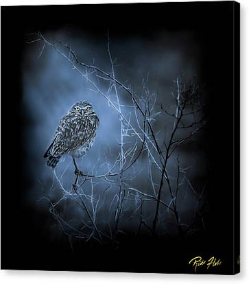 Canvas Print featuring the photograph Western Owl Gloom by Rikk Flohr