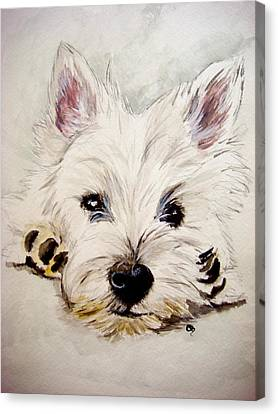 Westie Canvas Print by Carol Blackhurst