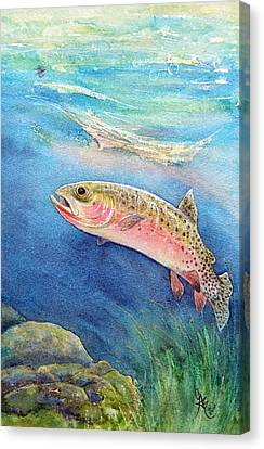 Westslope Cutthroat Canvas Print by Gale Cochran-Smith