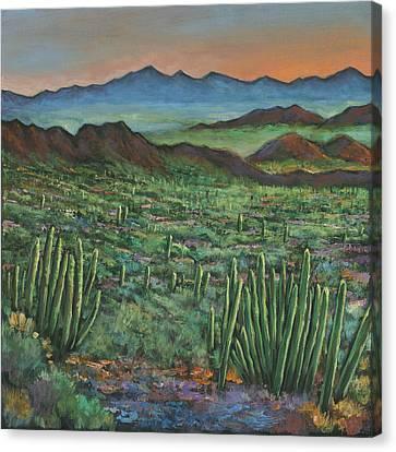 Flagstaff Canvas Print - Westward by Johnathan Harris