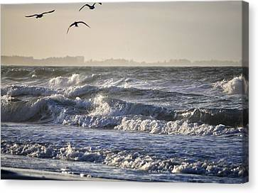 Wet And Wild Canvas Print by John Knapko