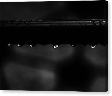 Canvas Print featuring the photograph Wet Bar by Richard Rizzo