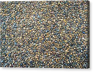 Wet Beach Stones Canvas Print by John Williams