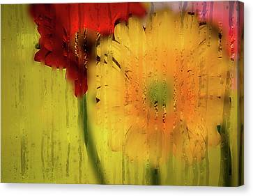 Wet Glass Flowers Canvas Print