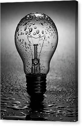 Old Light Bulb Canvas Print - Wet Light Bulb by Daniel Hagerman