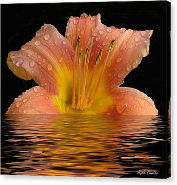 Wet Lilly Canvas Print by Rick Friedle
