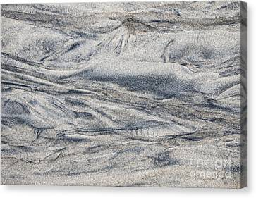 Wet Sand Abstract I Canvas Print by Elena Elisseeva