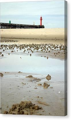 Wet Sands Canvas Print by Jez C Self