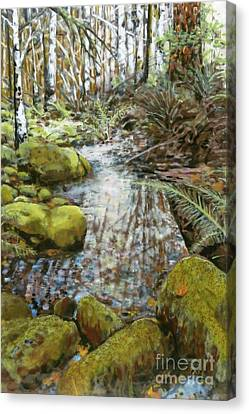 Canvas Print - Wet Spot In Woods by Andrea Benson