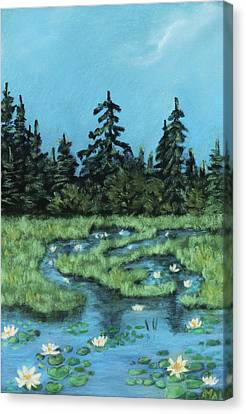 Canvas Print featuring the painting Wetland - Algonquin Park by Anastasiya Malakhova