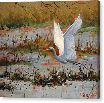 Wetland Heron Canvas Print by Graham Gercken