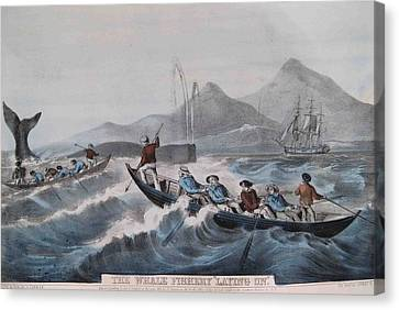 Whale Fishing Canvas Print by MotionAge Designs