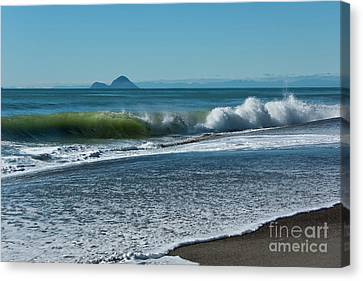 Canvas Print featuring the photograph Whale Island by Werner Padarin