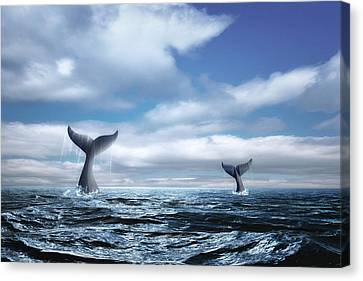 Whale Of A Tail Canvas Print by Tom Mc Nemar
