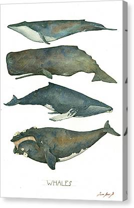 Educational Canvas Print - Whales Poster by Juan Bosco
