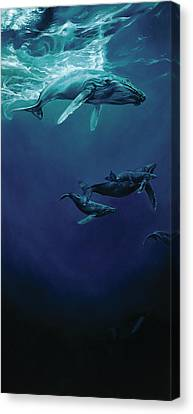 Whalesong Canvas Print by Heather Theurer