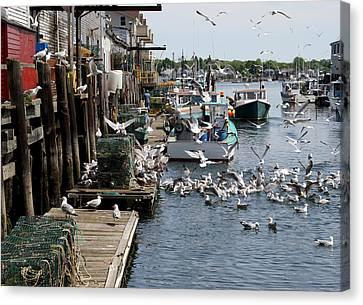 Canvas Print featuring the photograph Wharf Action by Lynda Lehmann