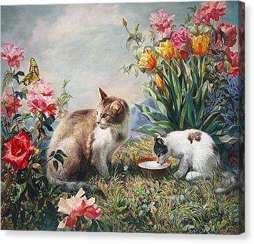 What A Girl Kitten Wants Canvas Print by Svitozar Nenyuk