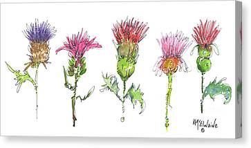What Is It About A Thistle Canvas Print by Kathleen McElwaine