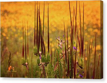 What Some Call Weeds Canvas Print by Mick Anderson
