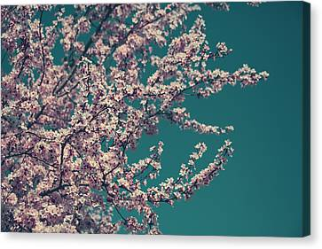 What This New Life Will Bring Canvas Print by Laurie Search