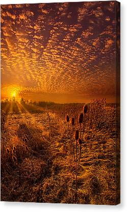 What Will Be Will Be Canvas Print by Phil Koch