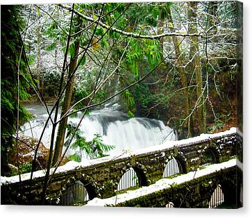 Whatcom Falls 3 Canvas Print