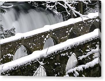 Whatcom Falls Winter 08 2 Canvas Print